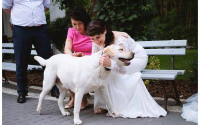 Ślub na ogrodzie ! Urzędnik w Winnym Garażu !